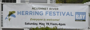 Rain dampens, but does not stop, Herring Festival