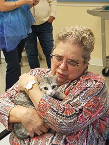 Kittens and seniors team up for purrrrfect snuggles